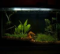 Aquarium Scape von Fluval
